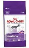 Royal Canin GIANT Junior, Рояль Канин Джайнт Юниор, сухой корм д
