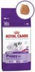 Royal Canin GIANT Puppy, Рояль Канин Джайнт Паппи, сухой корм дл