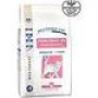 Royal Canin Young Female S/O, 3,5 кг